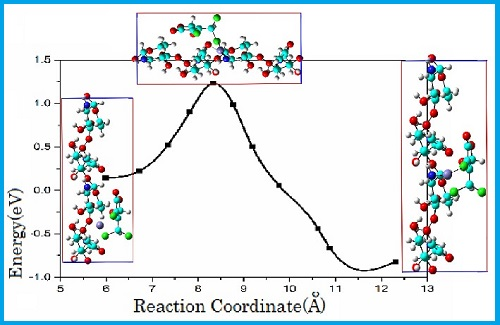 Host-guest interaction in chitosan– MX (3-chloro-4-(dichloromethyl)-5-hydroxy-2(5H)-furanone) complexes in water solution: Density Functional Study