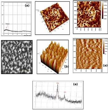Synthesis and Characterization of Noble Metal Nanowires by Electrodeposition in Porous Anodic Alumina Membranes