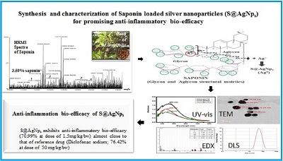 Promising anti-inflammatory bio-efficacy of saponin loaded silver nanoparticles prepared from the plant Madhuca longifolia