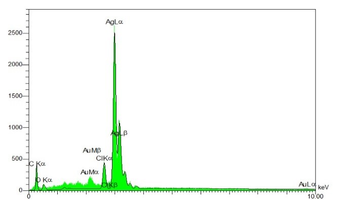Fig 2. EDX spectrum recorded from a film, after formation of silver nanoparticles. Different X-ray emission peaks are labeled.